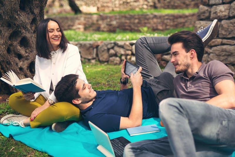Três amigos novos no piquenique fotografia de stock