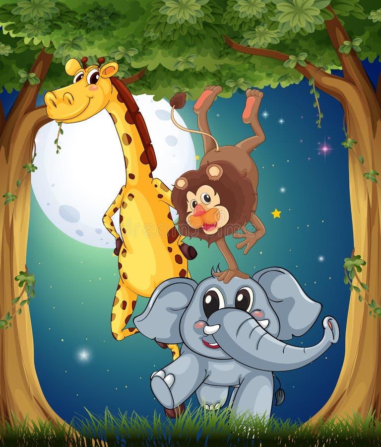 Três animais brincalhão na floresta sob o fullmoon brilhante ilustração stock