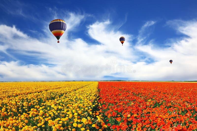 Três balões que voam sobre o campo foto de stock