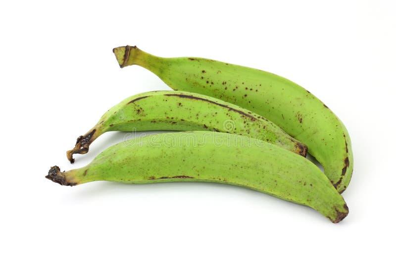 Três bananas do Plantain fotos de stock
