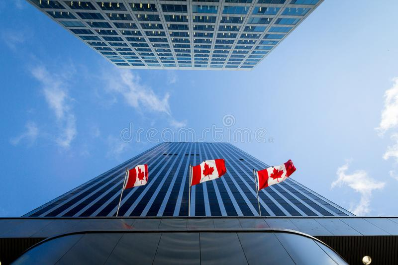Três bandeiras canadenses na frente de uma construção do negócio em Ottawa, Ontário, Canadá Ottawa é o capital de Canadá, foto de stock royalty free