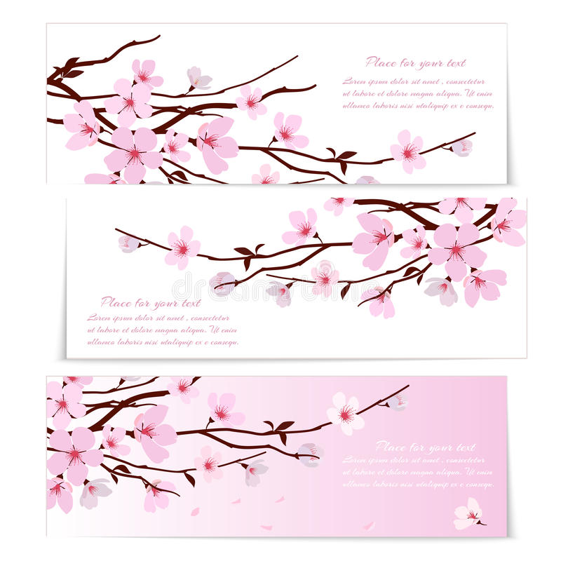 Três bandeiras com flores de Sakura ilustração stock