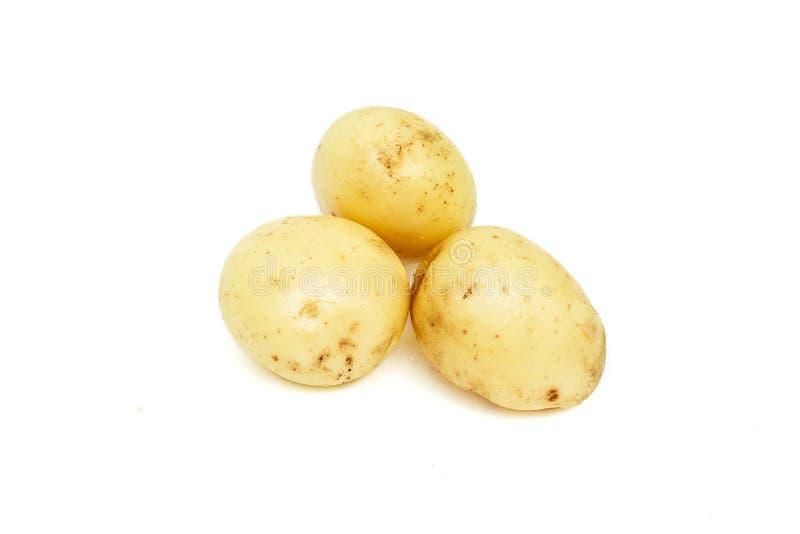 Três batatas cruas novas, pilha de vegetais orgânicos, objeto do alimento isolado no fundo branco fotos de stock royalty free