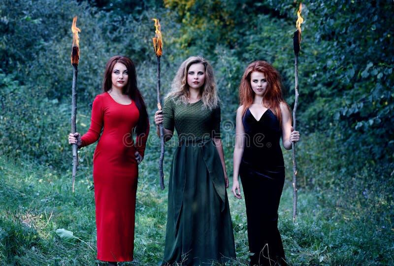 Três bruxas com com as tochas foto de stock