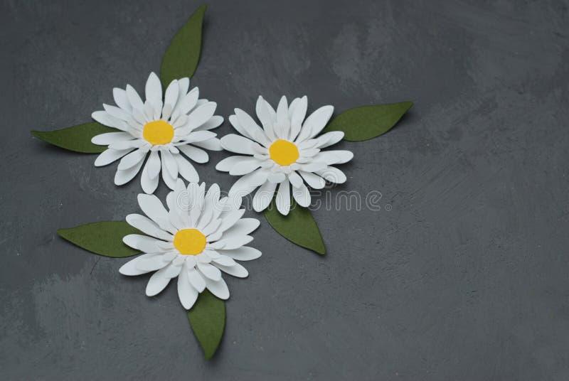 Três camomilas Flores falsificadas feitas do papel no canto da imagem Grey Background com pasta da cópia para o texto imagens de stock royalty free