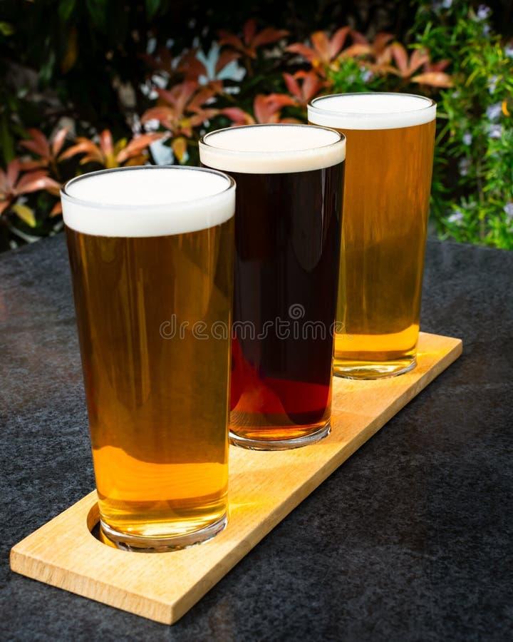 Três cervejas do ofício para fora no sol do verão foto de stock