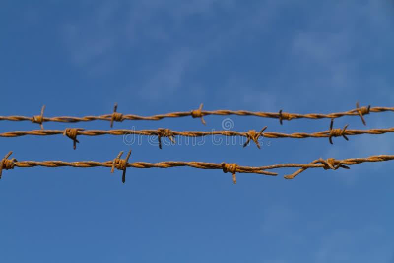 Três costas do arame farpado oxidado de encontro ao céu foto de stock
