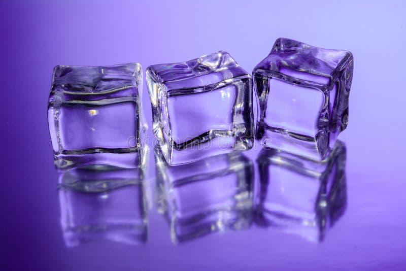 Três cubos de gelo na superfície de vidro com fundo violeta do inclinação fotografia de stock