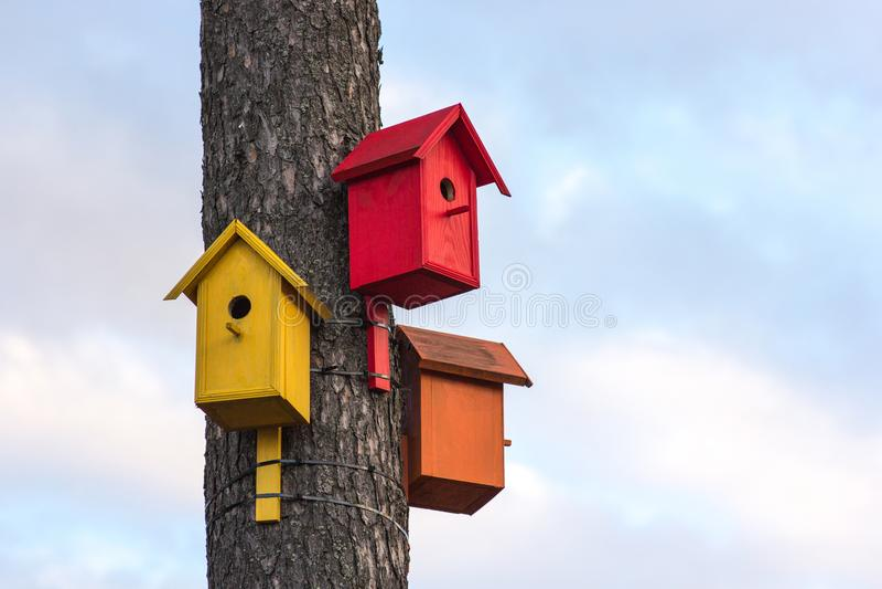 Três de aviários de madeira coloridos em uma árvore contra o céu azul do verão imagem de stock royalty free
