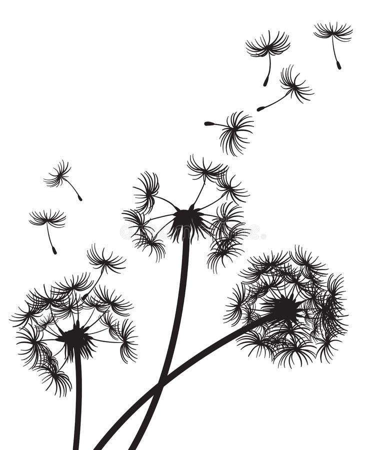 Três dentes-de-leão com as sementes que derivam na brisa ilustração stock