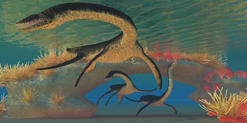 Mar do Plesiosaurus ilustração stock