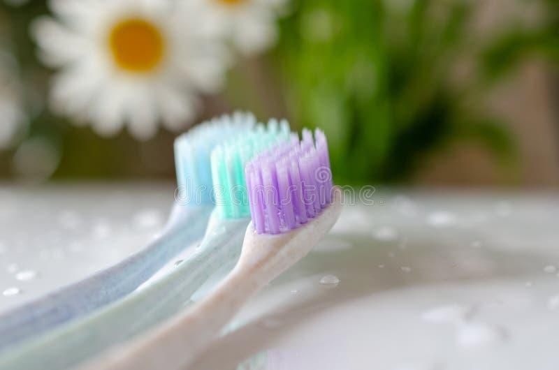 Três escovas de dentes de cores diferentes no fundo branco imagem de stock royalty free