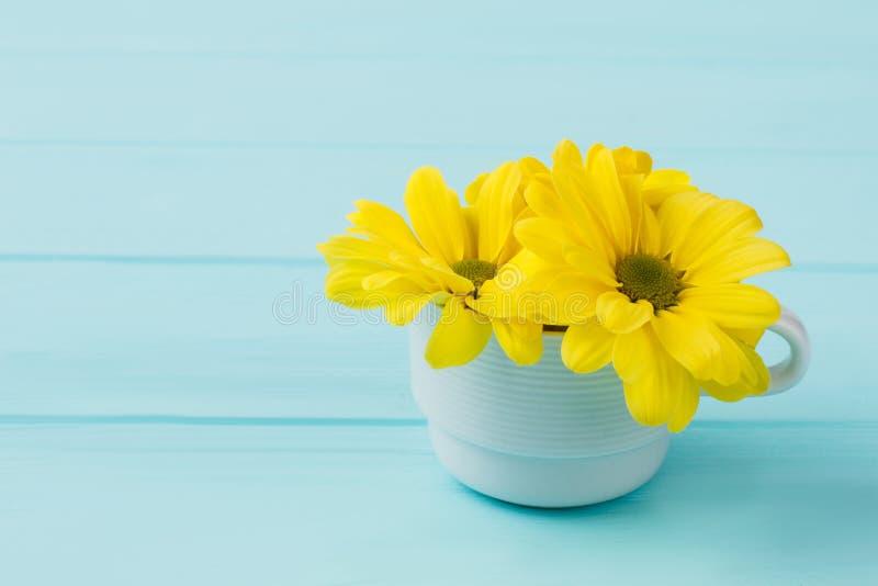 Três flores da camomila amarela no copo de chá branco imagem de stock