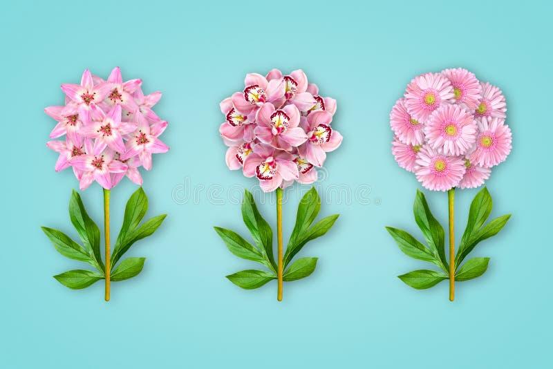 Três flores extravagantes em um fundo azul pastel A composi??o de l?rios, de orqu?deas e de gerberas cor-de-rosa Objeto da arte m fotografia de stock royalty free