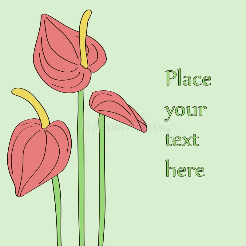 Três flores vermelhas do antúrio. ilustração stock