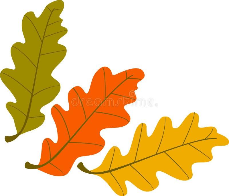Três folhas de outono ilustração do vetor