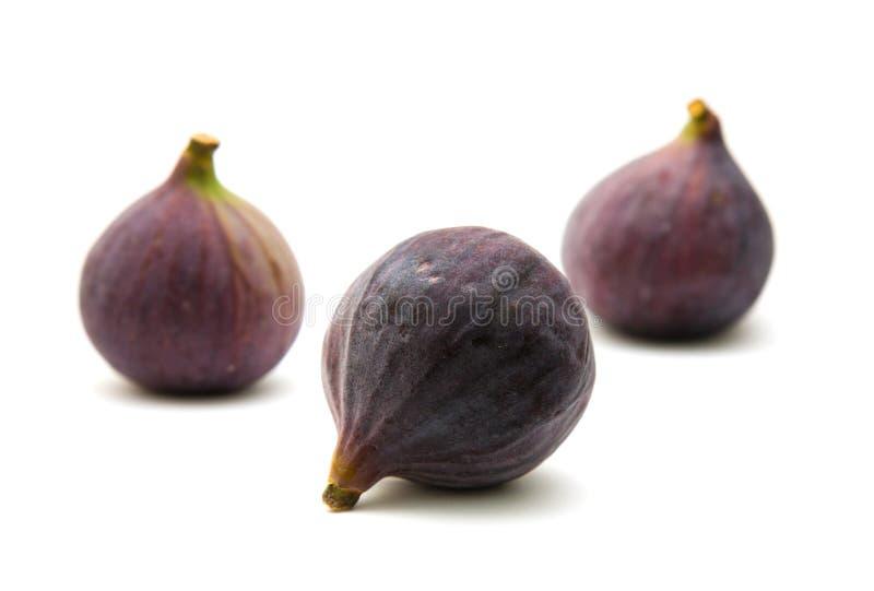 Três frutas roxas maduras do figo imagem de stock royalty free