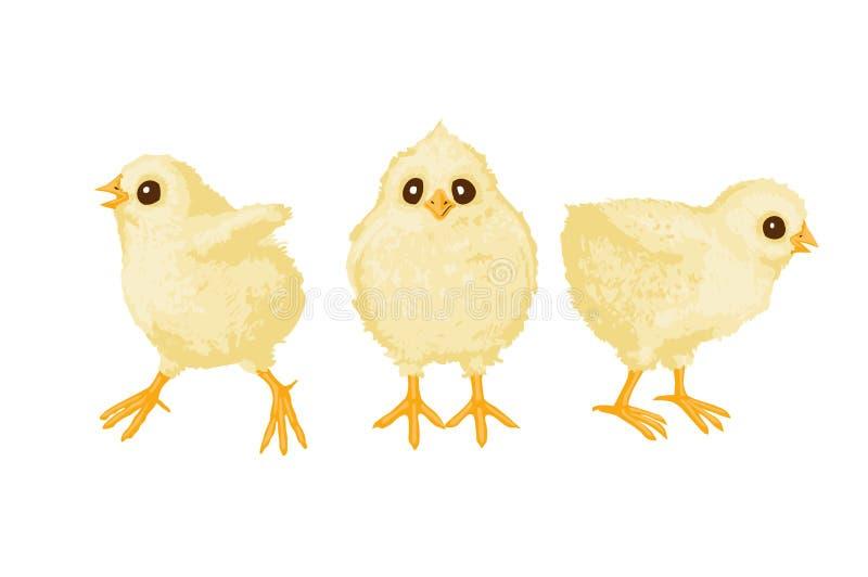 Três galinhas ilustração stock