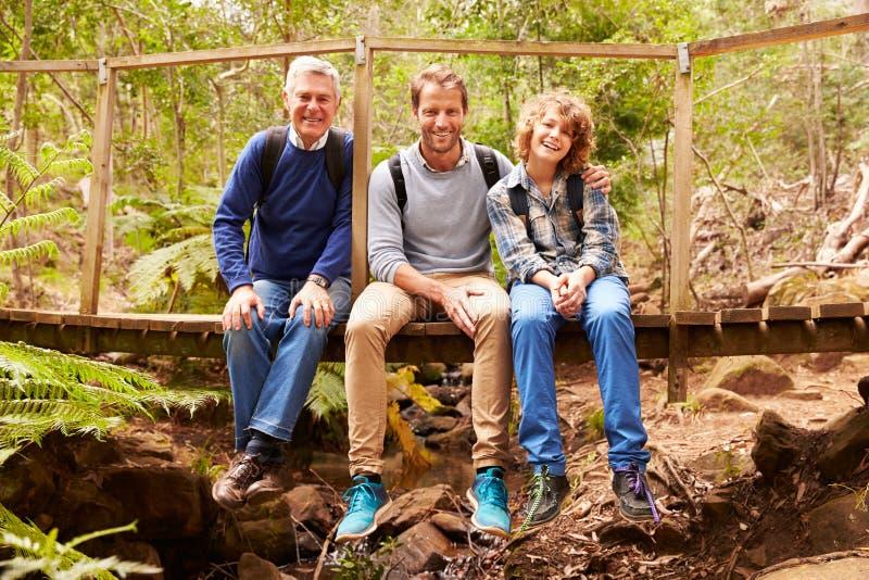 Três gerações de homens em uma ponte em uma floresta, retrato fotos de stock