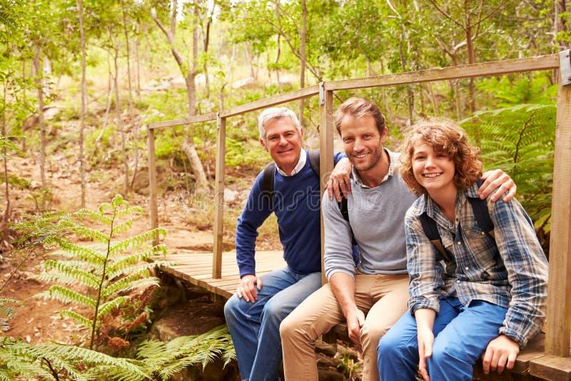 Três gerações de homens em uma ponte em uma floresta, retrato foto de stock