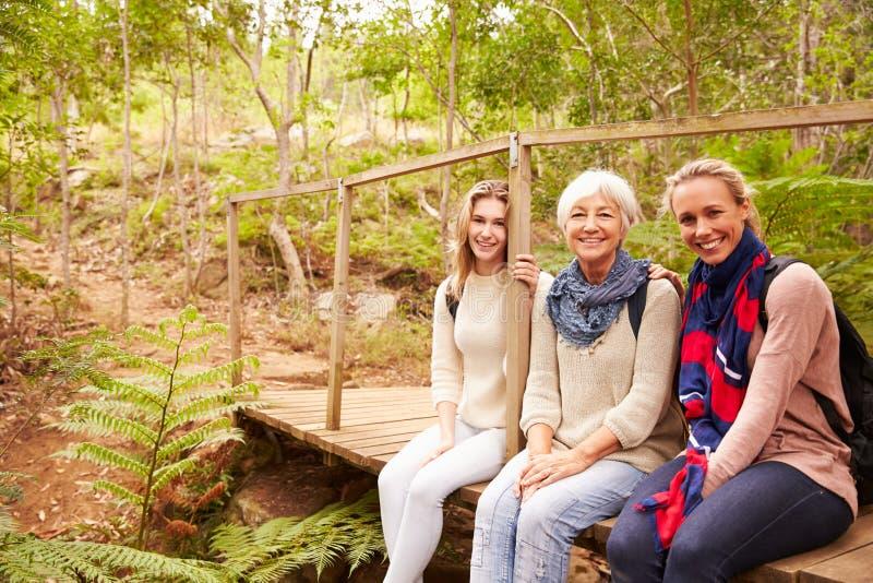 Três gerações de mulheres que sentam-se em uma floresta, retrato fotografia de stock royalty free