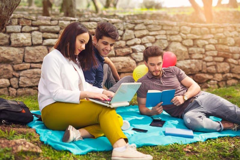 Três jovens no piquenique que senta-se na cobertura sob a azeitona imagem de stock