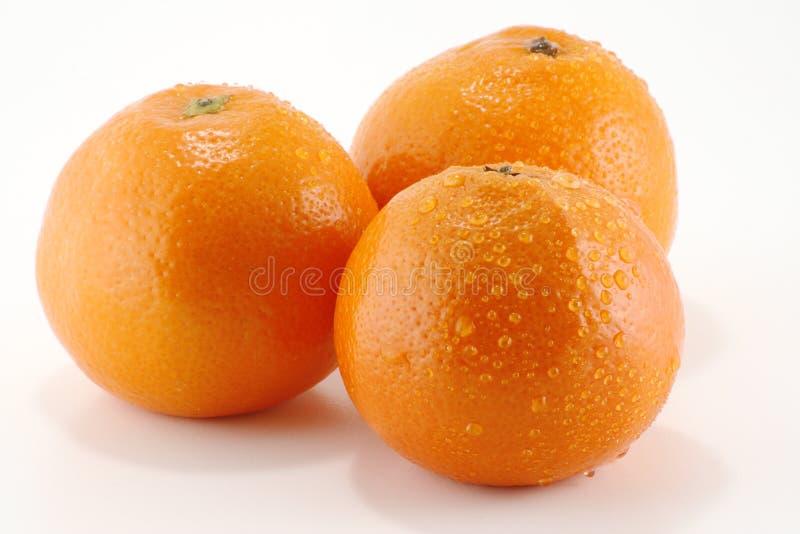 Três laranjas imagem de stock