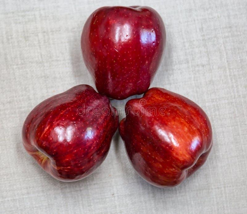 Três maçãs vermelhas genéricas imagem de stock royalty free