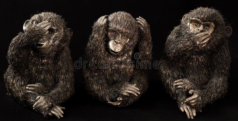 Três macacos imagens de stock royalty free