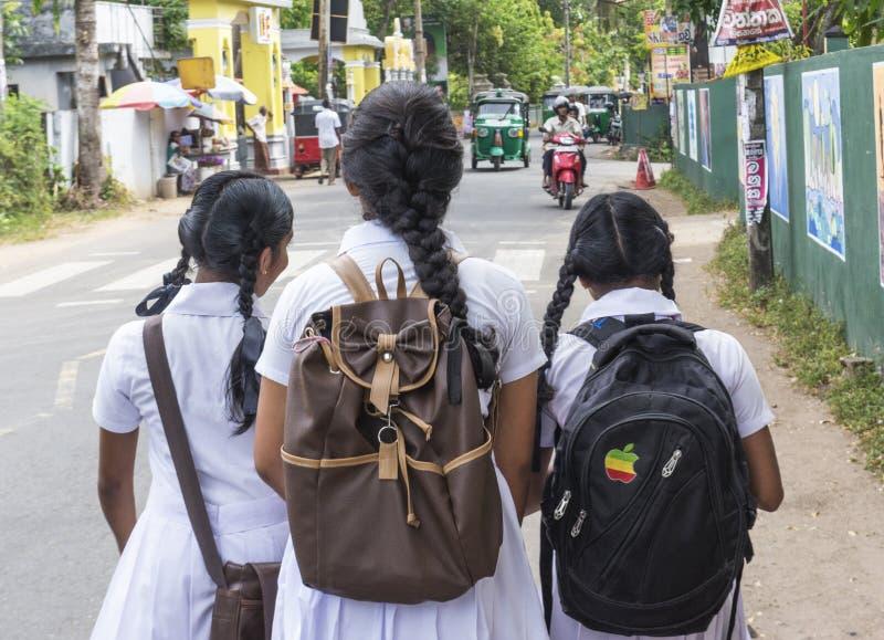 Três meninas cingalesas da escola no uniforme que andam na rua após classes imagem de stock royalty free