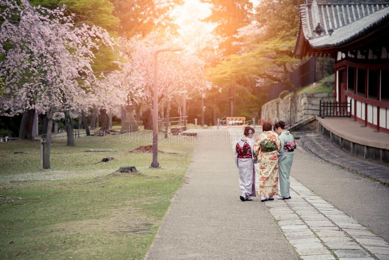 Três meninas japonesas que vestem o quimono que anda no jardim de sakura foto de stock