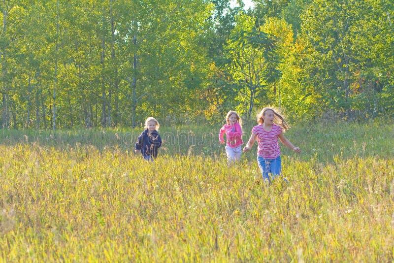 Três meninas que jogam em um prado. imagem de stock royalty free
