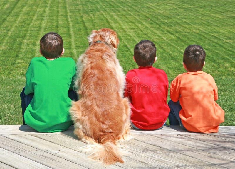 Três meninos e um cão fotos de stock