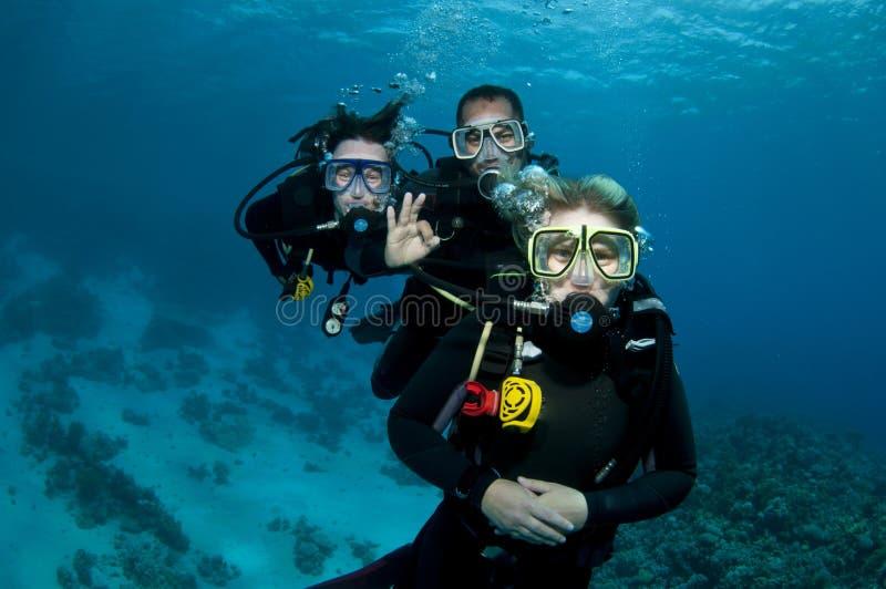 Três mergulhadores de mergulhador fotografia de stock