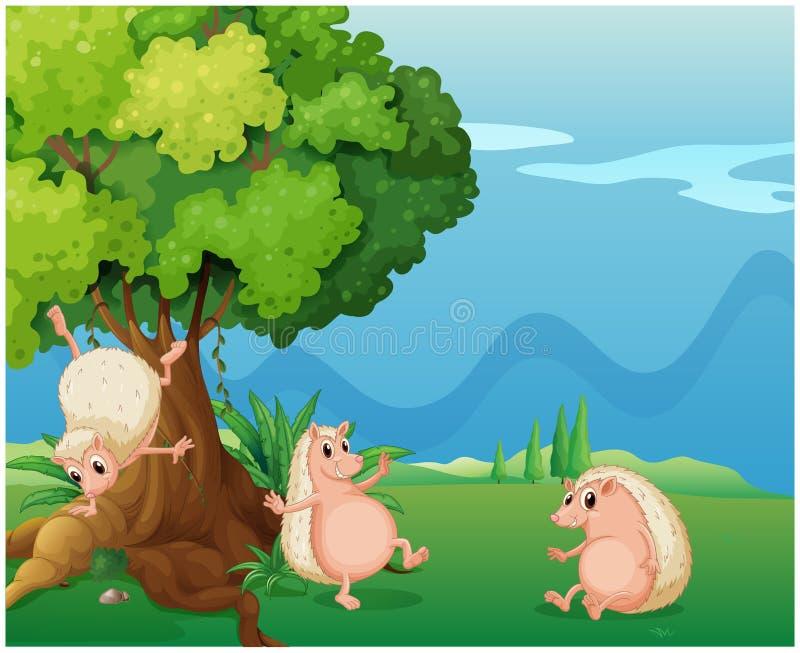 Três molehogs brincalhão perto da árvore velha ilustração do vetor