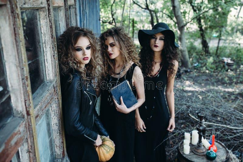 Três mulheres do vintage como bruxas fotos de stock royalty free