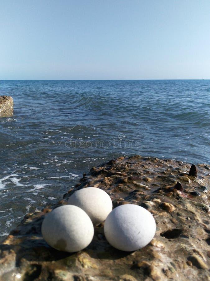Três ovos de pedra brancos do grande círculo encontram-se no quebra-mar concreto litoral do pedregulho fotos de stock
