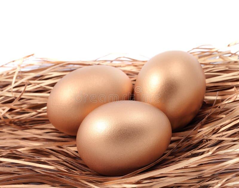 Três ovos dourados no ninho isolado no fundo branco imagem de stock