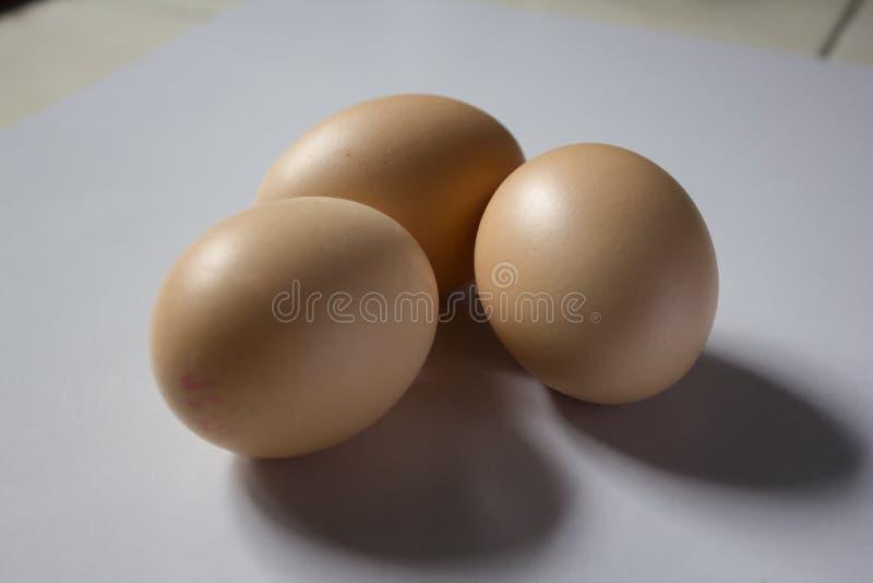 Três ovos são colocados em um fundo branco foto de stock