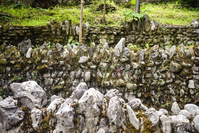 Três paredes de pedra de sobreposição do grunge com líquenes e vegetação verde no parque Fundo coberto da textura das paredes de  imagem de stock