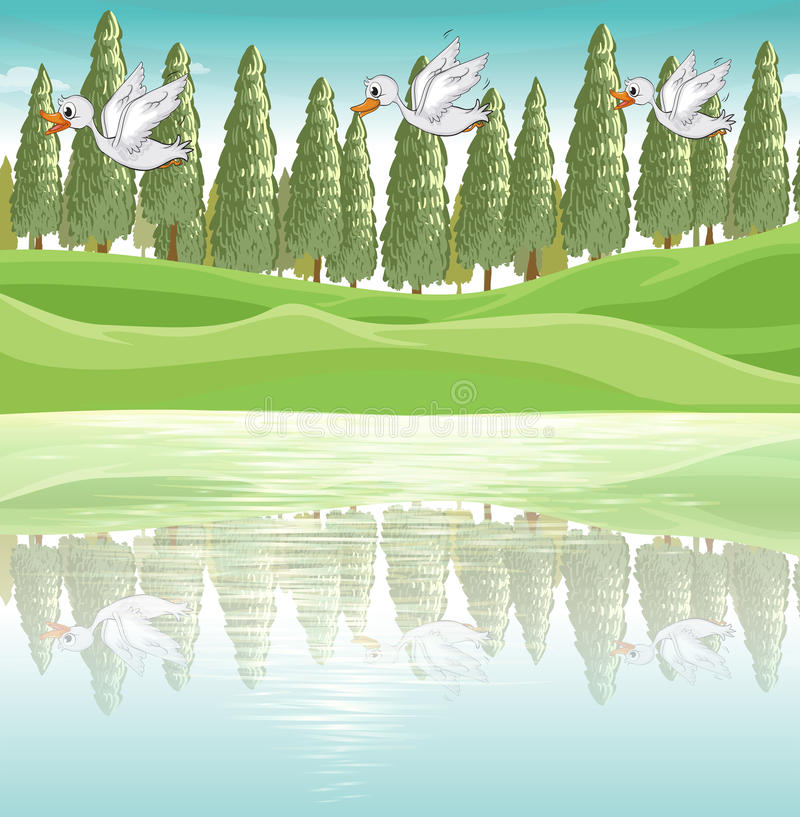 Três patos que voam ao longo do rio ilustração stock