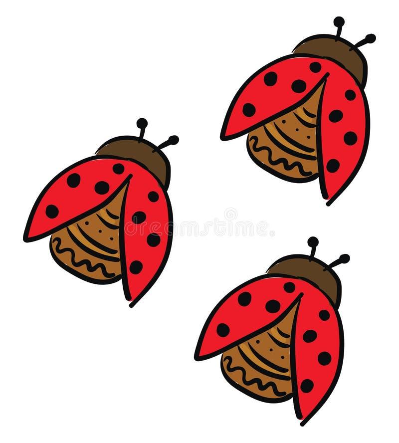 Três pequenos besouros giros vetor ou ilustração colorida ilustração stock