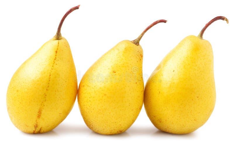Três peras amarelas em um fundo branco imagem de stock