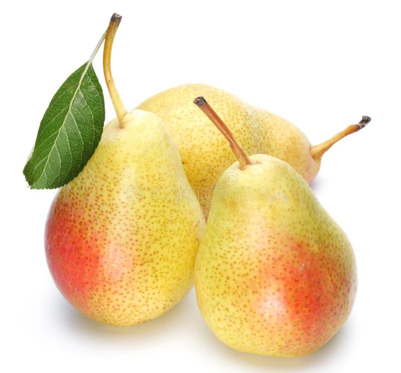 Três peras maduras. imagens de stock royalty free