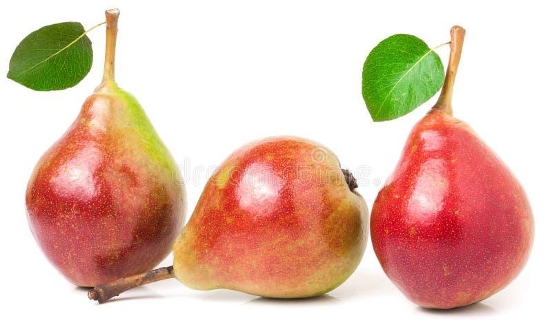 Três peras vermelhas com as folhas isoladas no fundo branco fotos de stock