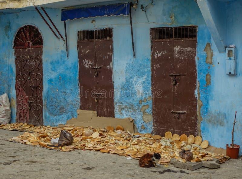 Três portas marrons imagem de stock royalty free
