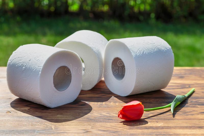 Três rolos do papel higiénico foto de stock royalty free