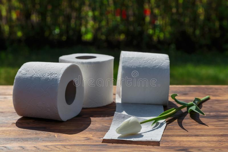 Três rolos do papel higiénico imagem de stock royalty free