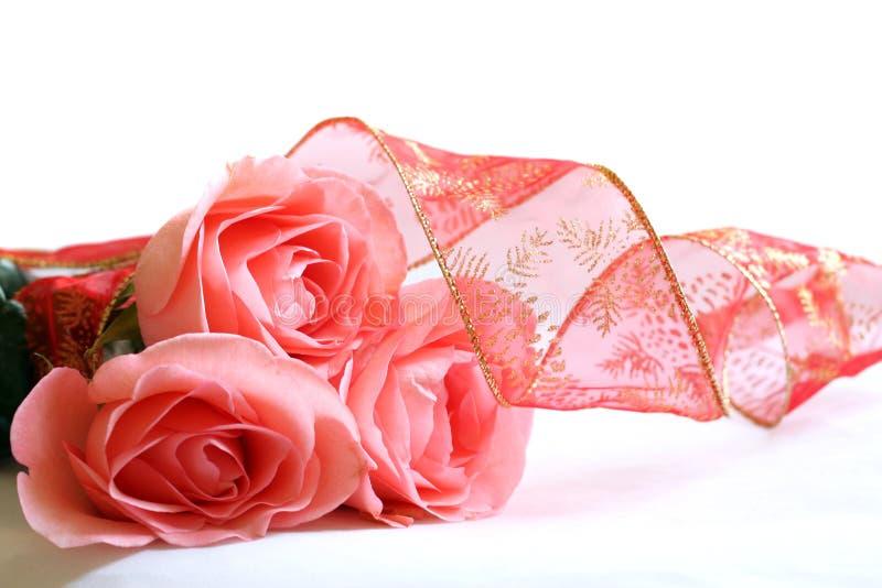 Três rosas e fitas cor-de-rosa fotos de stock royalty free