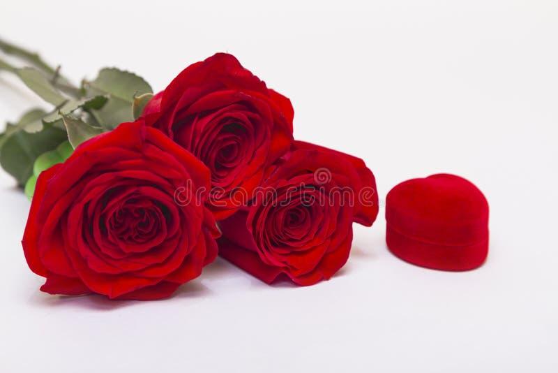 Três rosas vermelhas em fundo branco com caixa para joias com espaço para cópia imagens de stock